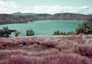 Idlers Bay - 1968