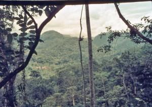 Oberi, Kokoda Track - 1968