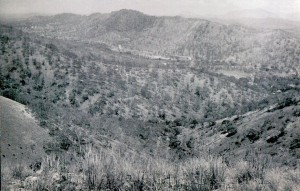 From Trig Hill, the road from Boroko to the camp