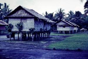 A typical Bouganville village