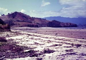 Taurama Beach