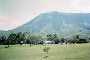 Hills behind Taurama