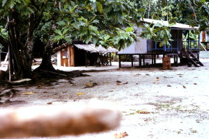 Tami Island